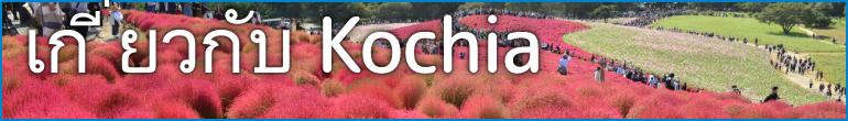 AboutKochia