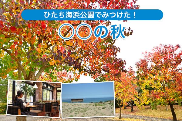 ひたち海浜公園でみつけた!『○○の秋』