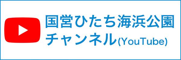 国営ひたち海浜チャンネル