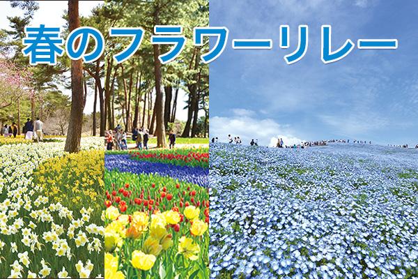 春のフラワーリレー