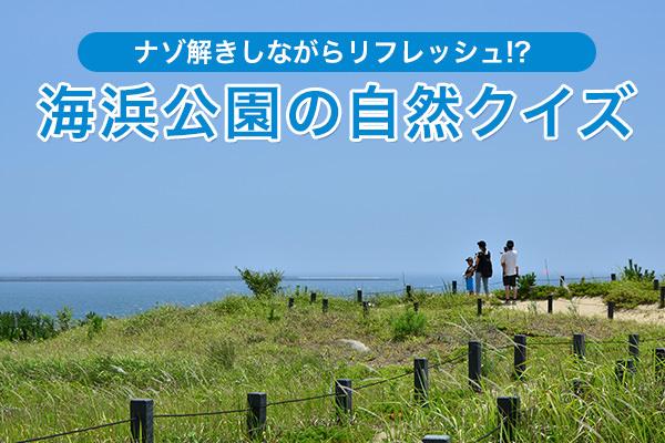 ナゾ解きしながらリフレッシュ!? 海浜公園の自然クイズ