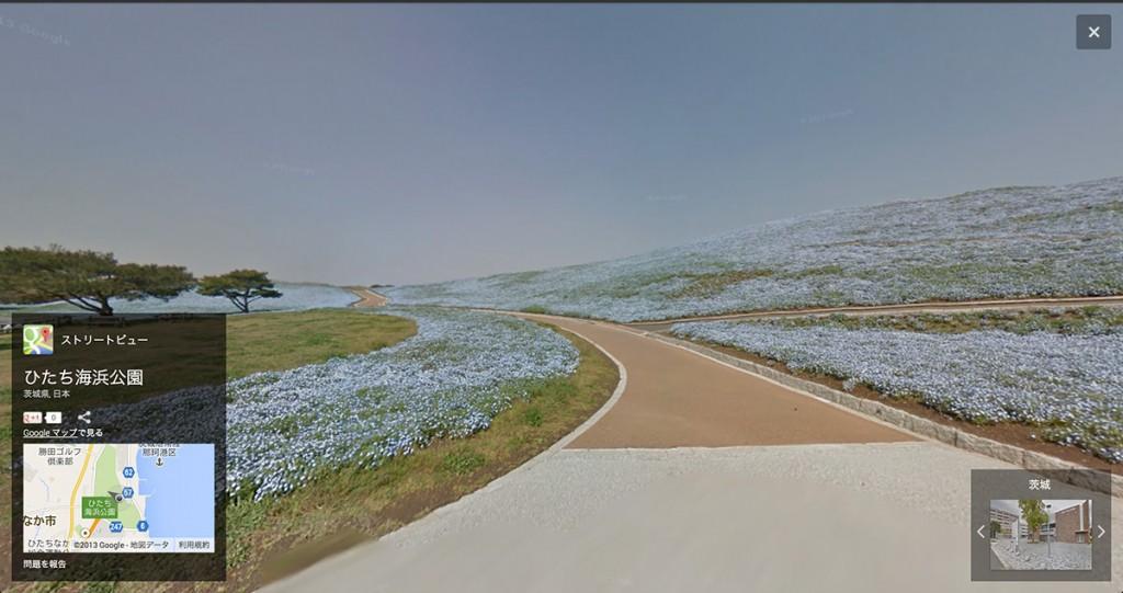 ネモフィラの咲くみはらしの丘(Googleストリートビューより)