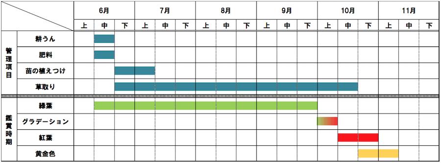 kochia-schedule