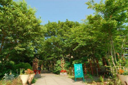 記念の森レストハウス
