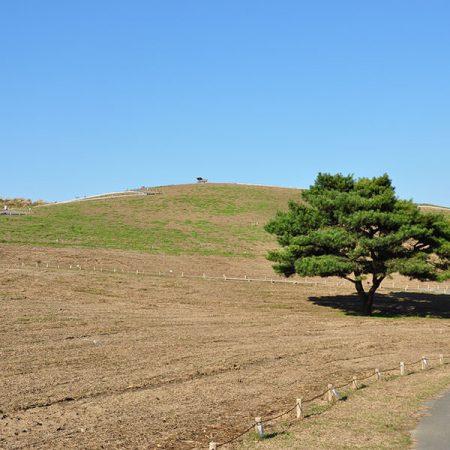 みはらしの丘