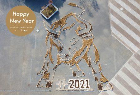2021年賀状A