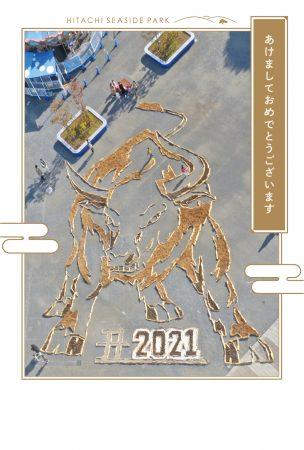 2021年賀状B